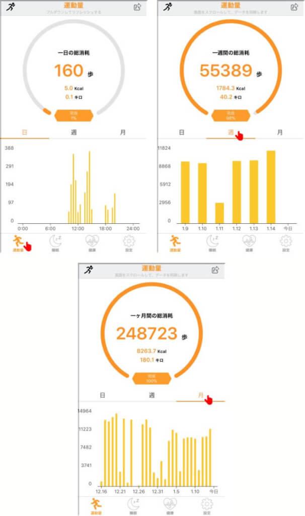歩数集計データの確認方法